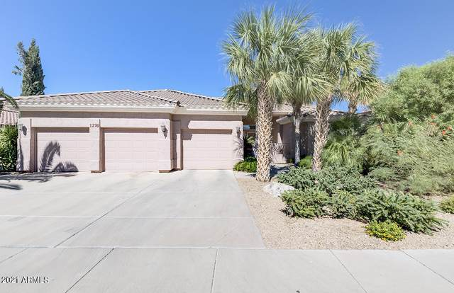 1276 E Sunset Drive, Casa Grande, AZ 85122 (MLS #6205205) :: Yost Realty Group at RE/MAX Casa Grande