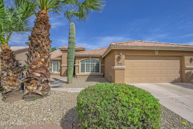 15340 W Amelia Drive, Goodyear, AZ 85395 (MLS #6205248) :: My Home Group
