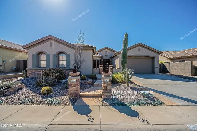 2449 W Kit Carson Trail, Phoenix, AZ 85086 (MLS #6205274) :: Yost Realty Group at RE/MAX Casa Grande