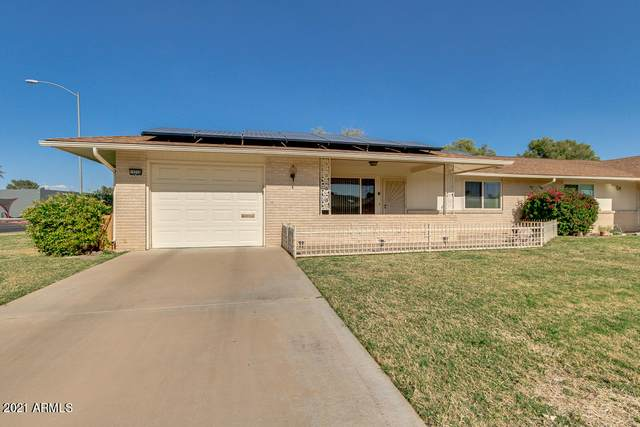 10228 W Pineridge Drive, Sun City, AZ 85351 (MLS #6205382) :: NextView Home Professionals, Brokered by eXp Realty