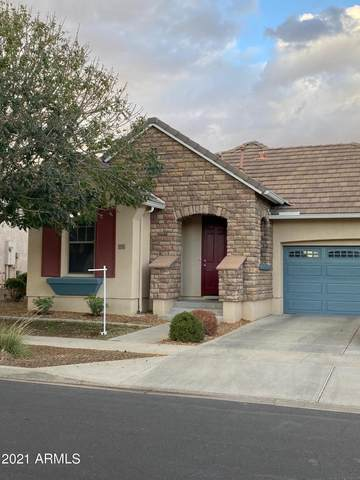 14924 W Voltaire Street, Surprise, AZ 85379 (MLS #6205435) :: Sheli Stoddart Team | M.A.Z. Realty Professionals