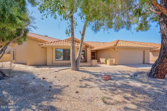 9201 W Kimberly Way, Peoria, AZ 85382 (MLS #6205603) :: Yost Realty Group at RE/MAX Casa Grande