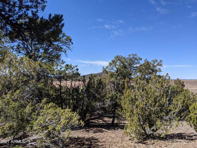lot 61 Stanford, Concho, AZ 85924 (MLS #6205781) :: The Carin Nguyen Team
