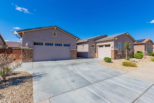 23710 N 169TH Avenue, Surprise, AZ 85387 (MLS #6205785) :: Yost Realty Group at RE/MAX Casa Grande