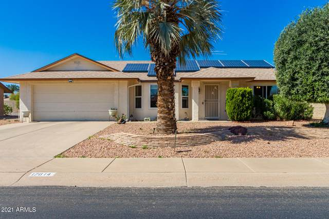 17614 N Lasso Drive, Sun City West, AZ 85375 (MLS #6205819) :: Long Realty West Valley