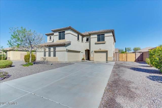 11128 E Roselle Avenue, Mesa, AZ 85212 (MLS #6206029) :: Yost Realty Group at RE/MAX Casa Grande