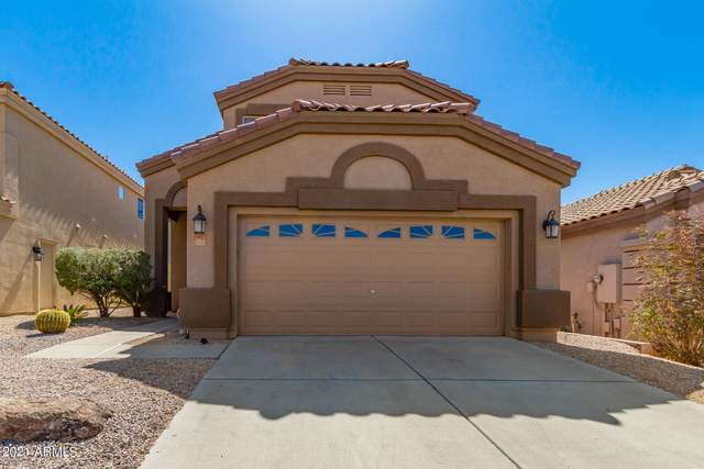 4413 E Smokehouse Trail, Cave Creek, AZ 85331 (MLS #6206096) :: The Newman Team