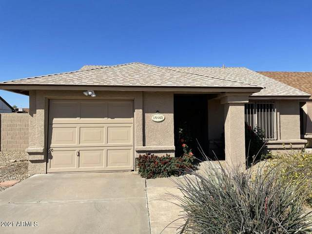 16442 N 18TH Street, Phoenix, AZ 85022 (MLS #6206149) :: The Everest Team at eXp Realty