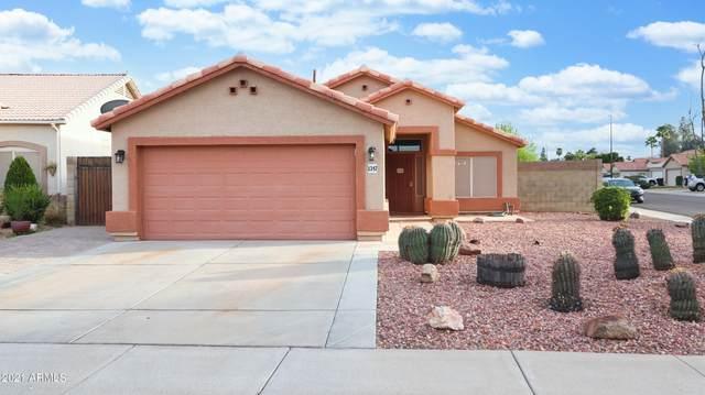 1347 E Page Avenue, Gilbert, AZ 85234 (MLS #6206155) :: The Daniel Montez Real Estate Group