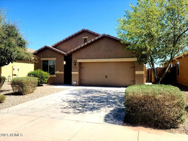 30141 N Oak Drive, Florence, AZ 85132 (MLS #6206269) :: Long Realty West Valley