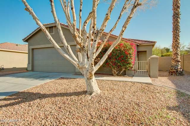 913 E Pedro Road, Phoenix, AZ 85042 (MLS #6206270) :: Yost Realty Group at RE/MAX Casa Grande