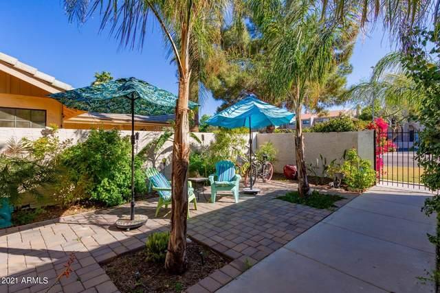 1222 E Northshore Drive, Tempe, AZ 85283 (MLS #6206292) :: Yost Realty Group at RE/MAX Casa Grande