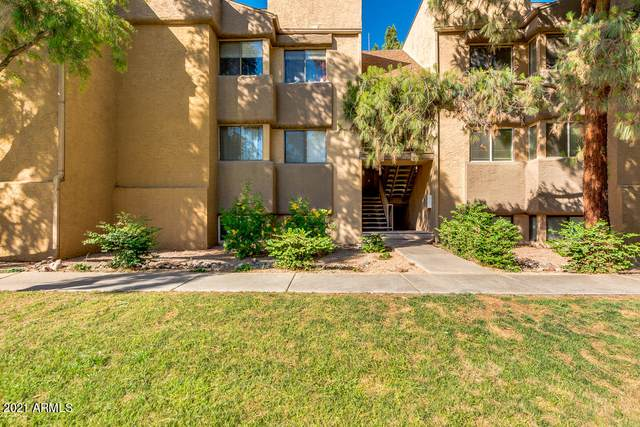18811 N 19TH Avenue #2017, Phoenix, AZ 85027 (MLS #6206301) :: Kepple Real Estate Group