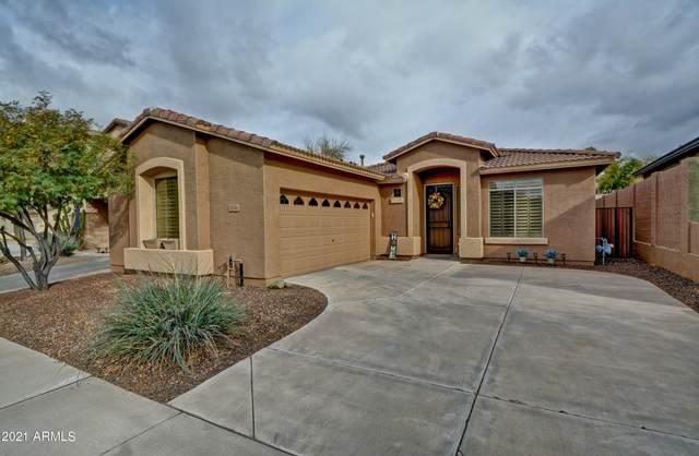 2534 W Florentine Road, Phoenix, AZ 85086 (MLS #6206307) :: TIBBS Realty