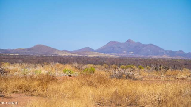 6151 W Davis Road, McNeal, AZ 85617 (MLS #6206386) :: Devor Real Estate Associates