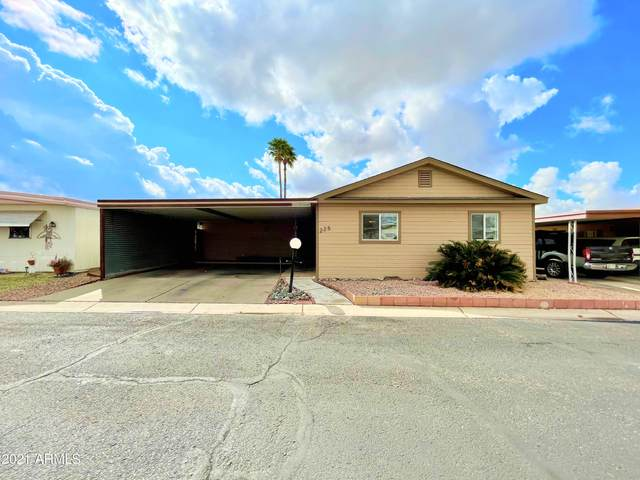 10951 N 91ST Avenue #225, Peoria, AZ 85345 (MLS #6206562) :: The Everest Team at eXp Realty