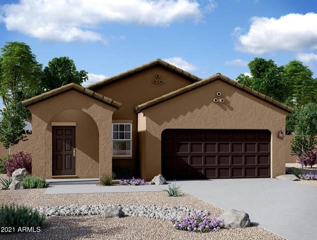 5543 E Moira Road, Florence, AZ 85132 (MLS #6206626) :: Yost Realty Group at RE/MAX Casa Grande