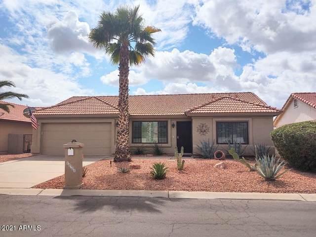 10321 E Navajo Place, Sun Lakes, AZ 85248 (MLS #6206707) :: Yost Realty Group at RE/MAX Casa Grande