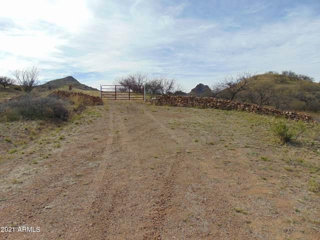 TBD Night Hawk Court, Patagonia, AZ 85624 (MLS #6206740) :: Keller Williams Realty Phoenix