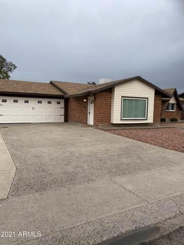 6308 N 40TH Drive, Phoenix, AZ 85019 (MLS #6206868) :: Yost Realty Group at RE/MAX Casa Grande