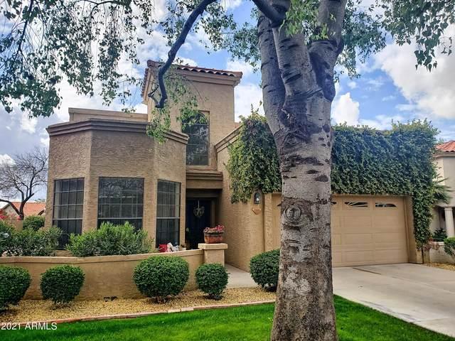 10551 E Fanfol Lane, Scottsdale, AZ 85258 (MLS #6206876) :: Yost Realty Group at RE/MAX Casa Grande