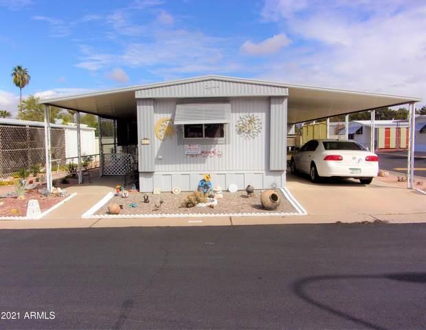7807 E Main Street Cc-73, Mesa, AZ 85207 (MLS #6206949) :: My Home Group