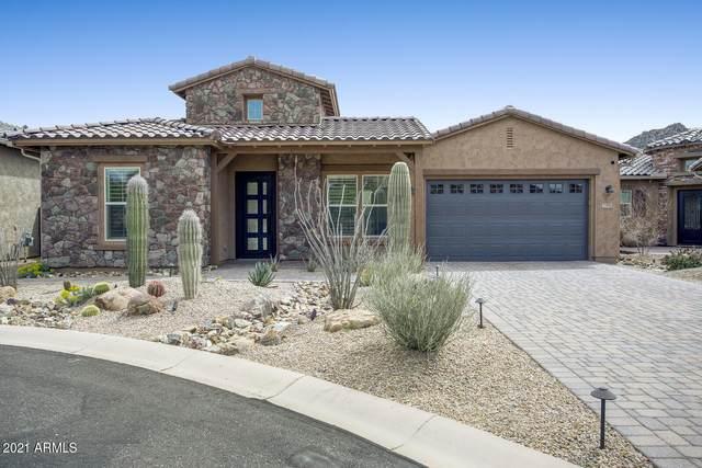 27090 N 109TH Way, Scottsdale, AZ 85262 (MLS #6207076) :: Yost Realty Group at RE/MAX Casa Grande