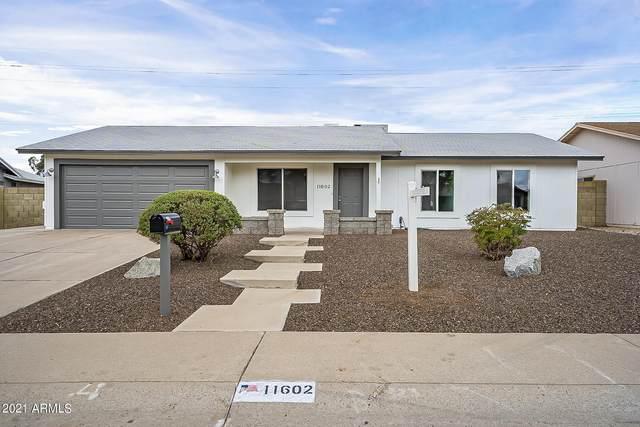 11602 S Mandan Street, Phoenix, AZ 85044 (MLS #6207093) :: Midland Real Estate Alliance
