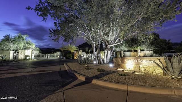 14228 S Canyon Drive, Phoenix, AZ 85048 (MLS #6207220) :: Dave Fernandez Team | HomeSmart