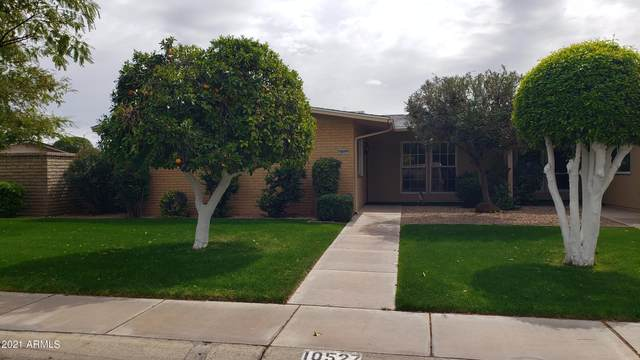 10527 W Highwood Lane, Sun City, AZ 85373 (MLS #6207266) :: Long Realty West Valley