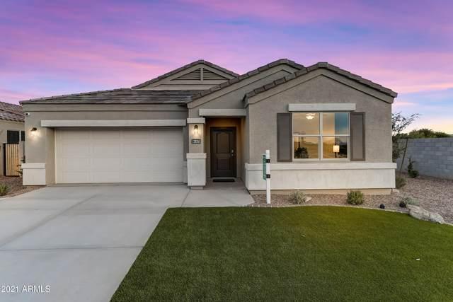 24696 N Alfalfa Drive, Florence, AZ 85132 (MLS #6207288) :: Yost Realty Group at RE/MAX Casa Grande