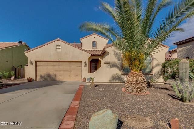 19048 N Del Mar Avenue, Maricopa, AZ 85138 (MLS #6207453) :: Yost Realty Group at RE/MAX Casa Grande