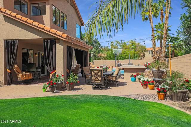 5824 E Grandview Road, Scottsdale, AZ 85254 (MLS #6207542) :: Yost Realty Group at RE/MAX Casa Grande