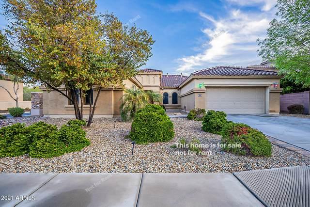 854 W Whitten Street, Chandler, AZ 85225 (MLS #6207554) :: Yost Realty Group at RE/MAX Casa Grande