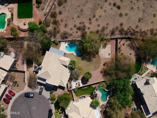 16244 S 25TH Place, Phoenix, AZ 85048 (MLS #6207760) :: Yost Realty Group at RE/MAX Casa Grande