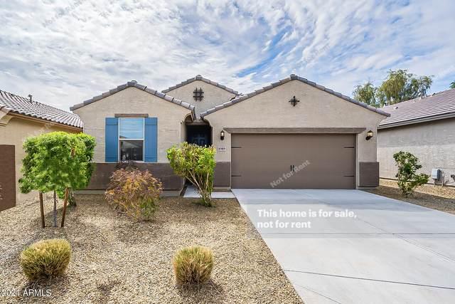 8989 W Townley Avenue, Peoria, AZ 85345 (MLS #6207928) :: Yost Realty Group at RE/MAX Casa Grande