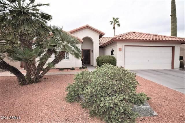 26608 S Saddletree Drive, Sun Lakes, AZ 85248 (MLS #6208051) :: Yost Realty Group at RE/MAX Casa Grande