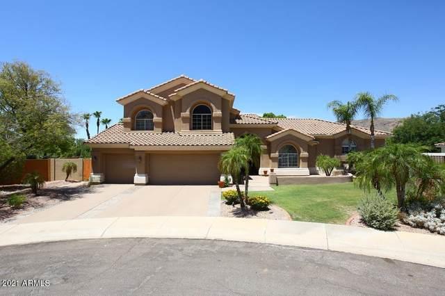 14202 S 14th Street, Phoenix, AZ 85048 (MLS #6208058) :: The Luna Team