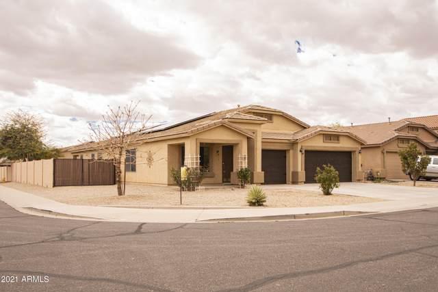 10717 E Cliffrose Lane, Florence, AZ 85132 (MLS #6208073) :: The Riddle Group