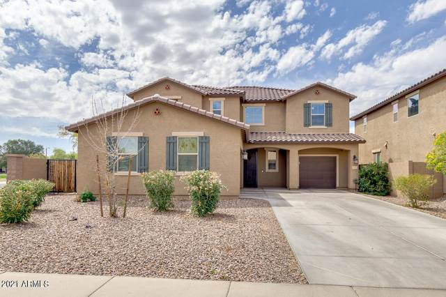 33972 N Sandstone Drive, San Tan Valley, AZ 85143 (MLS #6208094) :: Yost Realty Group at RE/MAX Casa Grande