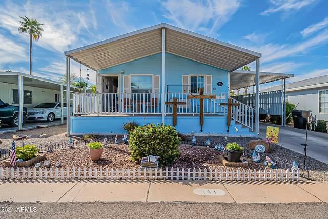 201 S Greenfield Road #144, Mesa, AZ 85206 (MLS #6208167) :: The Luna Team