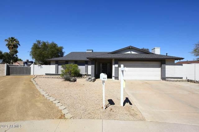 1516 W Hononegh Drive, Phoenix, AZ 85027 (MLS #6208173) :: Yost Realty Group at RE/MAX Casa Grande