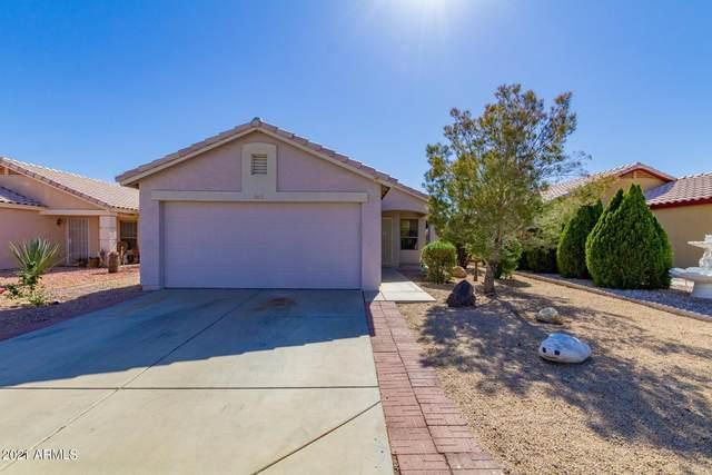 16522 N 158TH Avenue, Surprise, AZ 85374 (MLS #6208430) :: Yost Realty Group at RE/MAX Casa Grande
