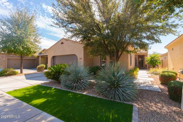 253 E Jade Drive, Chandler, AZ 85286 (MLS #6208648) :: Yost Realty Group at RE/MAX Casa Grande