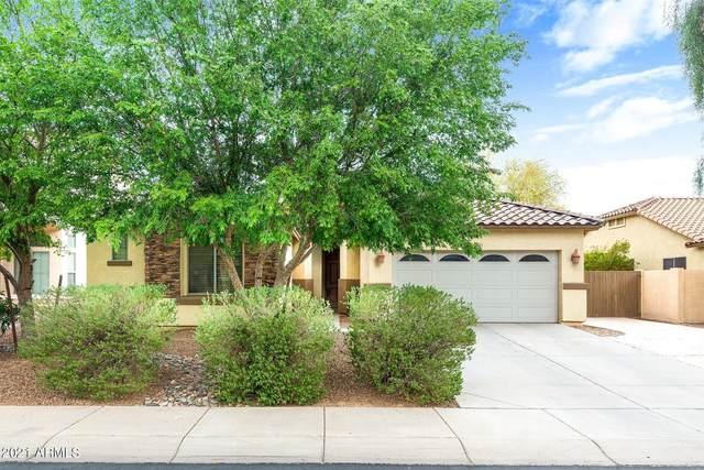 2134 E Ebony Drive, Chandler, AZ 85286 (MLS #6208719) :: Yost Realty Group at RE/MAX Casa Grande
