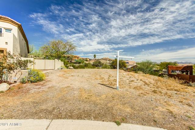 18055 N 14TH Place, Phoenix, AZ 85022 (MLS #6208735) :: Synergy Real Estate Partners
