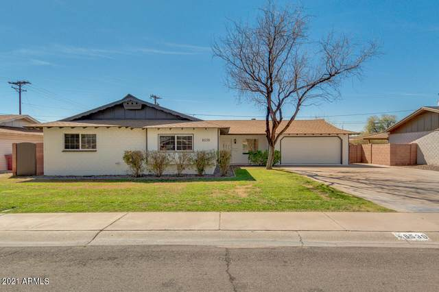 8539 E Vernon Avenue, Scottsdale, AZ 85257 (MLS #6208778) :: My Home Group