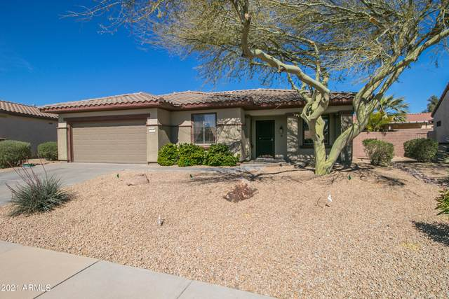 19152 N Tamarisk Flower Way, Surprise, AZ 85387 (MLS #6208880) :: Yost Realty Group at RE/MAX Casa Grande