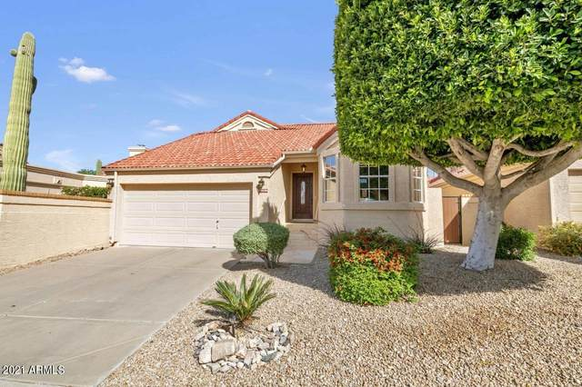 10806 N 112th Place, Scottsdale, AZ 85259 (MLS #6208882) :: Yost Realty Group at RE/MAX Casa Grande