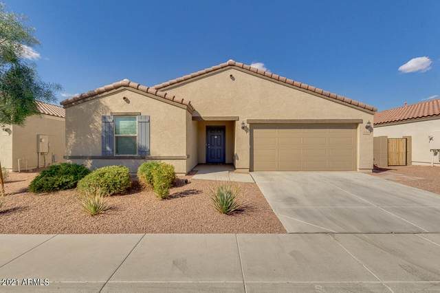 1744 E Chanute Pass, Phoenix, AZ 85040 (MLS #6208915) :: The Riddle Group
